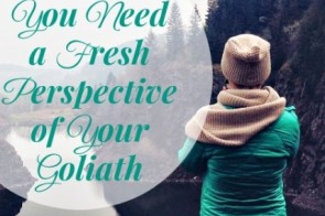 When you've been facing down a giant like Goliath, but your battle is not yet over, you begin to grow weary, discouraged. What if a change in perspective could be the light at the end of the tunnel that you need to persevere? Read more here about When You Need a Fresh Perspective of Your Goliath