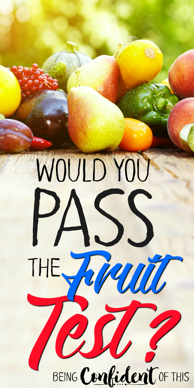 Do you want to know if you are walking with the Lord? Examine your fruit!  Do they pass the test? Or are you striving to produce fruit all on your own that just aren't quite holding up? spiritual fruit, the spiritual fruit test, christian living, produce spiritual fruit, abiding in the Vine, walking with the Lord