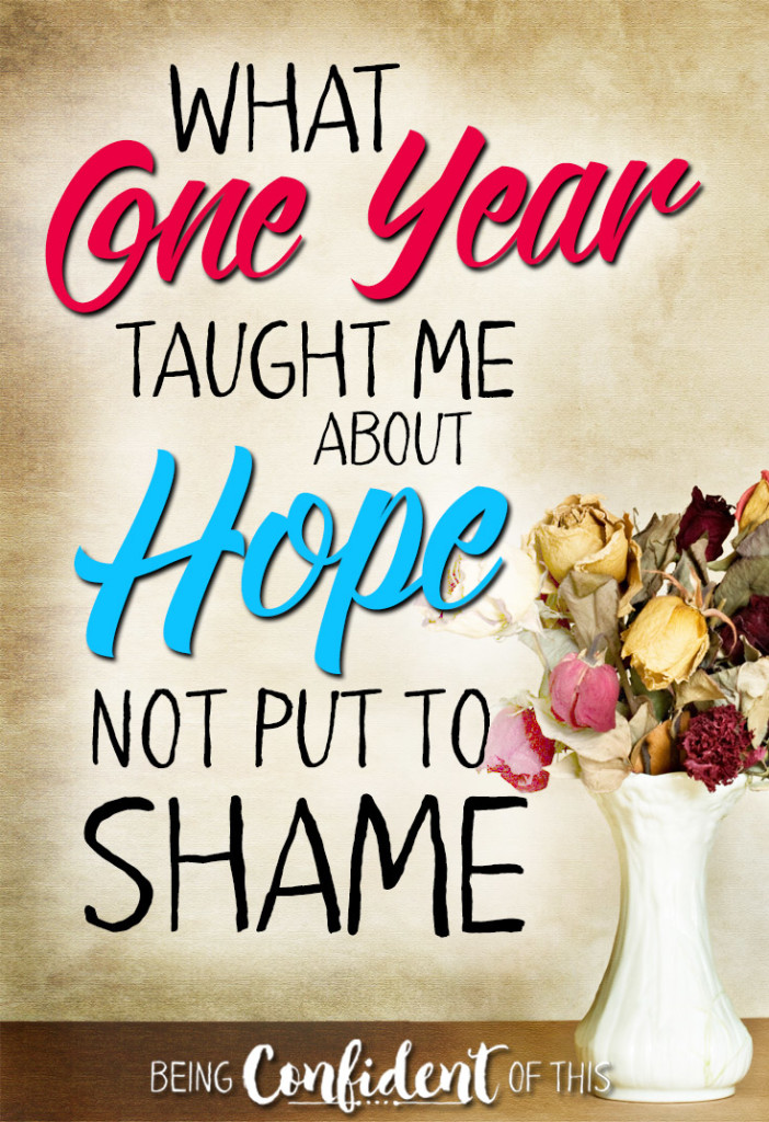 What 1 year taught be about a hope that is not put to shame! #hope #noshame #Christianwomen #book resources for Christians | godly women | Bible study | devotional | marriage book | unashamed | insecurity | how to have hope | trusting God | discipleship | spiritual growth | growing in Christ | giveaway | anniversary