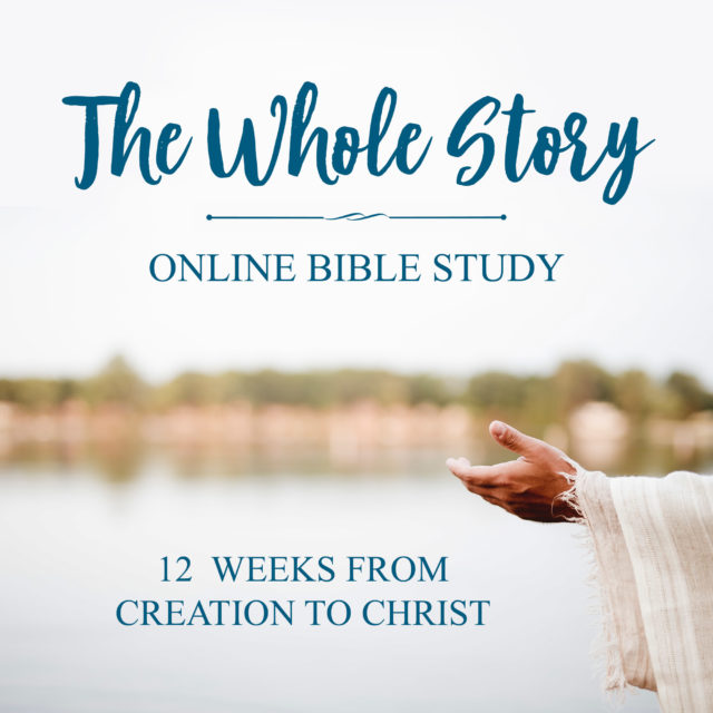 Join our first ever ONLINE Bible study group! The Whole Story is a 12 week look at the message of the Bible, beginning at creation and ending after Christ. This group is perfect for both Bible study beginners and seasoned students of the Word. #biblestudy #onlinebiblestudy #free #big picture Being Confident of This | The Stranger on the Road to Emmaus | studying the Bible chronologically | Bible study method | How to study the Bible | The best way to study the Bible | creation to Christ | the big picture of God's Word | how to study the Bible